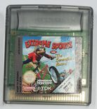 Extreme Sports with the Berenstain Bears - GBC